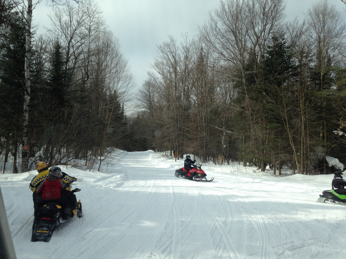 Great groomed trails, hardest decision is which way to go.