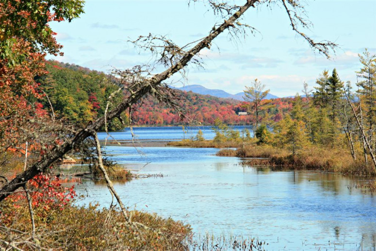 More Adirondack fall foliage