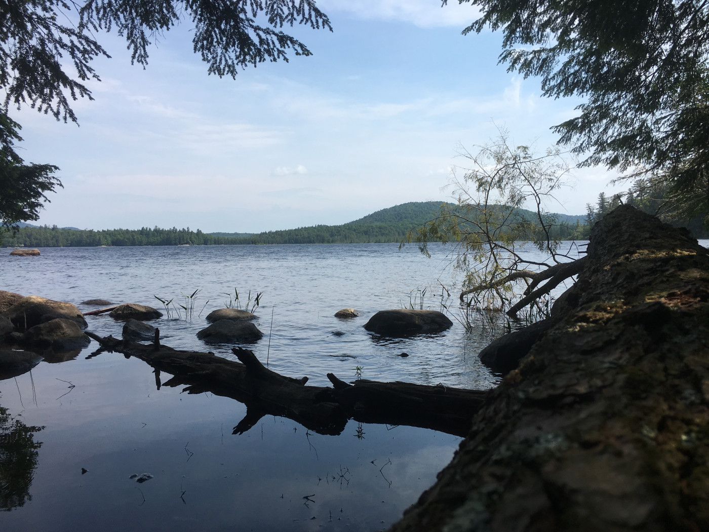 The view from an Adirondack campsite